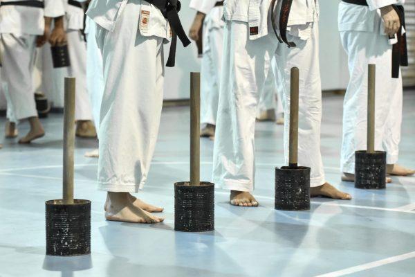 כלי אימון קראטה גוג'ו ריו